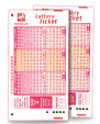 lottery tickets icon